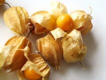 Aguaymanto, fruto peruano imagens de stock