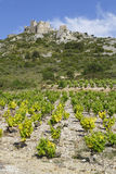 Aguilar castle over the grapes Royalty Free Stock Photos
