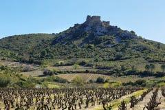 ` Aguilar för Chateau D i Frankrike royaltyfri foto