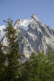 Aguille Du密地勃朗峰法国 库存照片