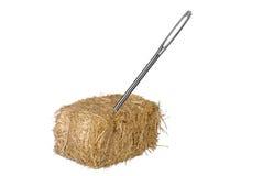 Aguja en haystack Imagen de archivo