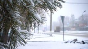 Agujas del abeto cubiertas con nieve y coches defocused en un camino nevado almacen de metraje de vídeo