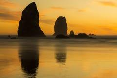 Agujas en la puesta del sol Imágenes de archivo libres de regalías