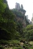 Agujas impresionantes de la montaña en el parque nacional de Zhangjiajie Fotografía de archivo libre de regalías