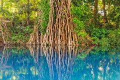 Agujero azul de Matevulu - Espiritu Santo Foto de archivo libre de regalías