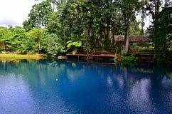 Agujero azul en Espiritu Santo Island, Vanuatu fotos de archivo