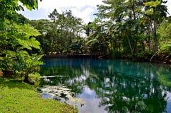 Agujero azul en Espiritu Santo Island, Vanuatu fotografía de archivo libre de regalías