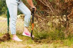 Agujero de excavación de la mujer en jardín fotos de archivo