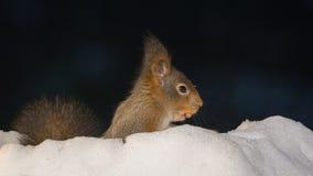 Agujero de la nieve Fotos de archivo