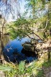 Agujero de natación en el río de Suwanee Fotos de archivo libres de regalías