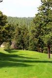 Agujero del golf rodeado por Trees Imagen de archivo