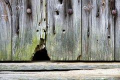 Agujero del ratón en una puerta de granero vieja imagen de archivo libre de regalías