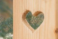 Agujero en forma de corazón en superficie de madera Imágenes de archivo libres de regalías
