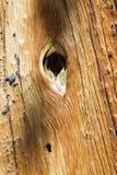 Agujero en madera Fotos de archivo