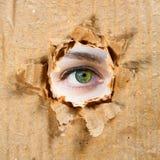Agujero en papel y ojo Fotografía de archivo libre de regalías