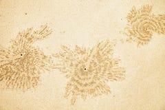 Agujeros de los cangrejos en la arena de la playa Imagen de archivo
