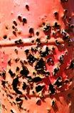 Agujeros de punto negro Imagen de archivo libre de regalías