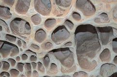 Agujeros en rocas Foto de archivo