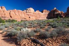 Agulhas no parque nacional de Canyonlands fotografia de stock
