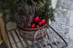 Agulhas verdes do abeto no vaso de flores decorado com as bolas vermelhas do Natal Imagem de Stock Royalty Free