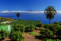Agulo and El Teide Volcano Stock Images