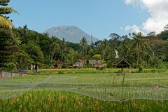The Agung Volcano in Bali stock photography