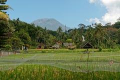 Agung Volcano en Bali Fotografía de archivo