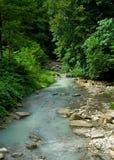agura nabiału rzeka Zdjęcie Royalty Free