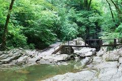 Agura River in the Agura gorge near the city of Sochi Stock Images