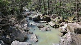 Agura river stock video