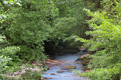 Agura rzeka Obrazy Stock