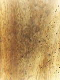 Agusanado de madera viejo del fondo Imagenes de archivo