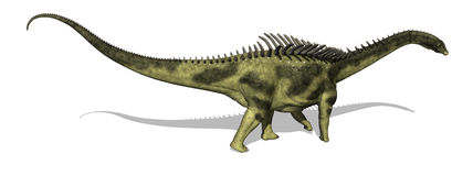 Agustinia Dinosaur. The Agustinia was a sauropod dinosaur that lived during the Early Cretaceous period - 3d render Royalty Free Stock Photos