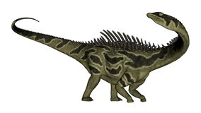 Agustinia dinosaur - 3D render Royalty Free Stock Photos