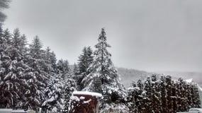 Ah inverno fotografie stock