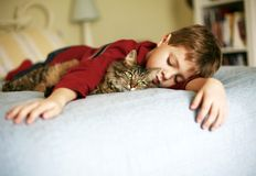 Ah, This is the LIFE!. A cute little kitten laying under sleeping childs arm, just enjoying life stock image