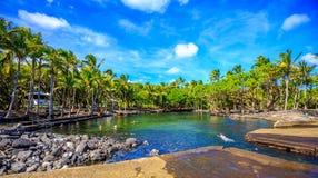 Ahalanui Beach Park - Hawaii. Puna, Hawaii - December 2, 2014: The tide pool in Ahalanui Beach Park (aka PuÊ»alaÊ»a County Park) is volcanically heated, a royalty free stock photos