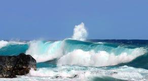 Ahalanui Black Lava Rock Beach Royalty Free Stock Photography