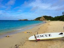 Aharen wyrzucać na brzeg, tokashiki wyspa, Okinawa, Japonia Obrazy Royalty Free