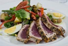 ahi sałatki tuńczyk Zdjęcia Stock