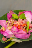 Ahi Tuna Salad Royalty Free Stock Images