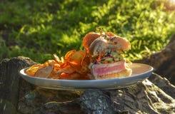 Ahi Tuna Sandwich Arkivbilder