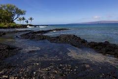 Ahihi zatoczka, Maui, Hawaje Obrazy Stock