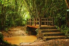 Ahimè il ponte dei purwo Fotografie Stock Libere da Diritti