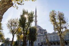 ahmed Istanbul meczetowy sułtanu indyk Obraz Stock