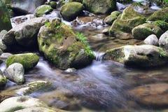 ¡Ahora este río se está moviendo rápidamente! Fotos de archivo libres de regalías