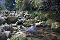 ¡Ahora este río se está moviendo rápidamente! Foto de archivo libre de regalías