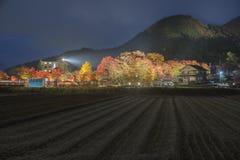 Ahorn-Korridor in Nashigawa-Fluss, Japan Lizenzfreie Stockfotografie