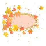 Ahornblätter auf weißem Hintergrund Stockbilder