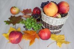 Ahornblätter, Nektarine, Äpfel, Trauben und andere Geschenke der Natur Stockbild